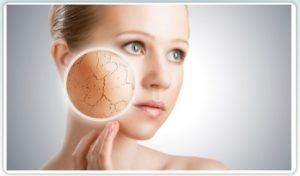 Plastic Surgery in Boca Raton, FL